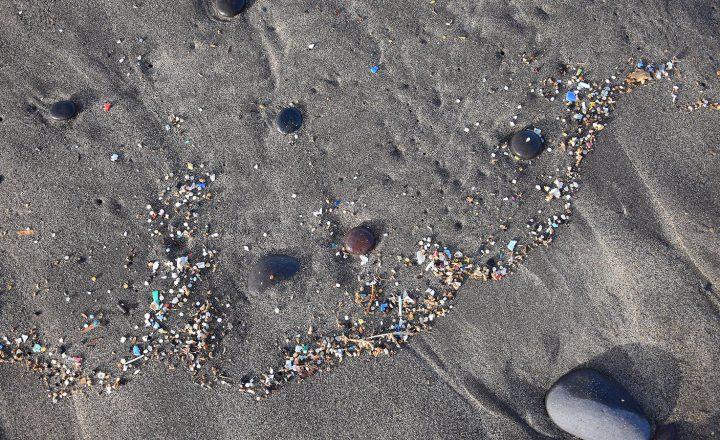 Weniger Mikroplastik – mehr Transparenz
