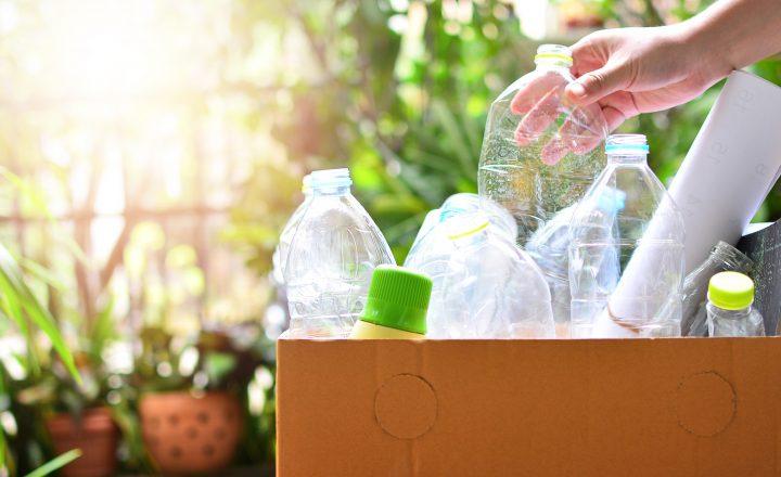 Verpackungen: umweltfreundliche Alternativen in Sicht