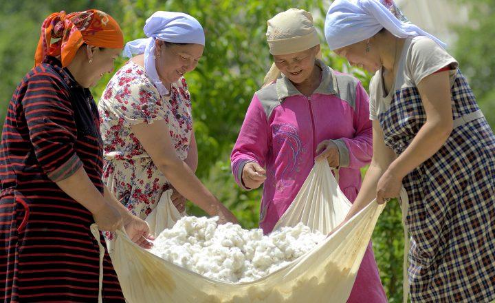 Aldi will auf 100 Prozent zertifizierte Baumwolle umstellen