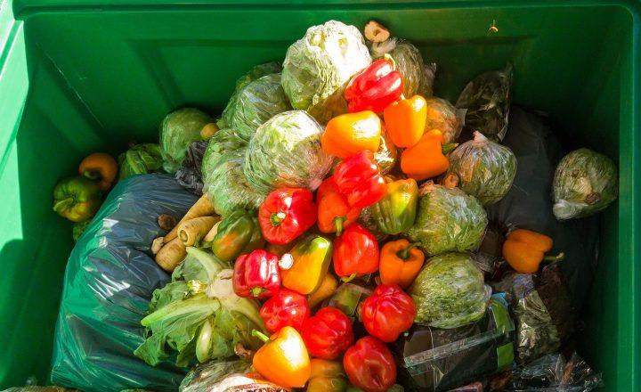 Viele Wege führen zu weniger Lebensmittelverschwendung