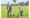 Vilsa: neuer Strategiebereich und Ernteprojekt